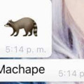 Machape