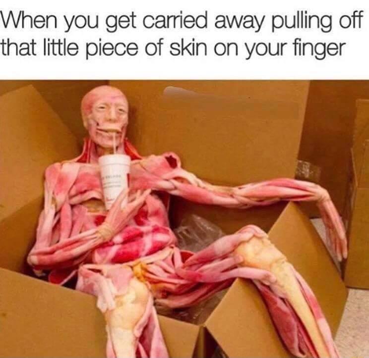 Fleshy - meme