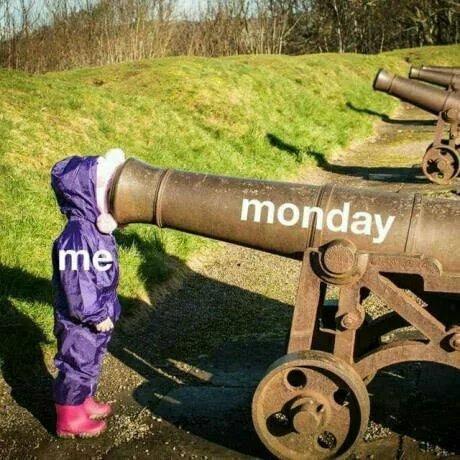 Morning.... - meme