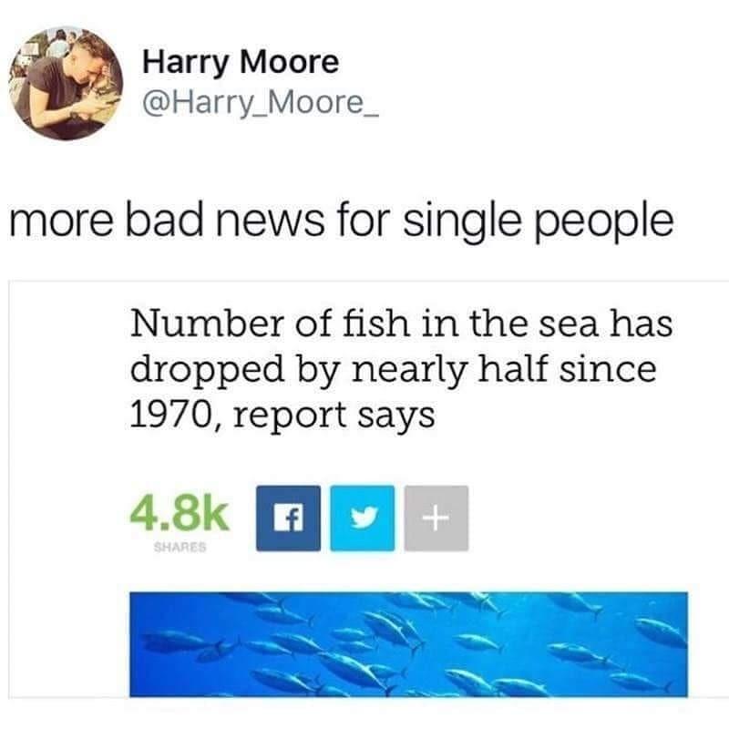 Bad news single people... - meme