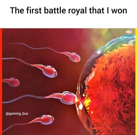Meilleures battle Royale du monde - meme