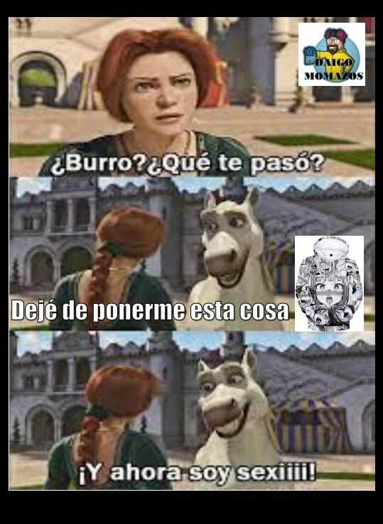 Bien hecho Burro - meme