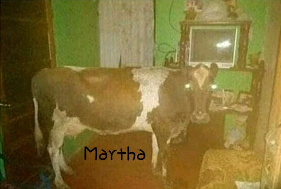 Ella es Martha - meme