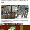 Burro peruano