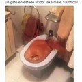Jaque mate 100tifikos