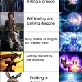 what will you do if you see the dragon irl??