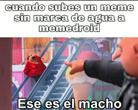 Plantilla gratis :3 - meme
