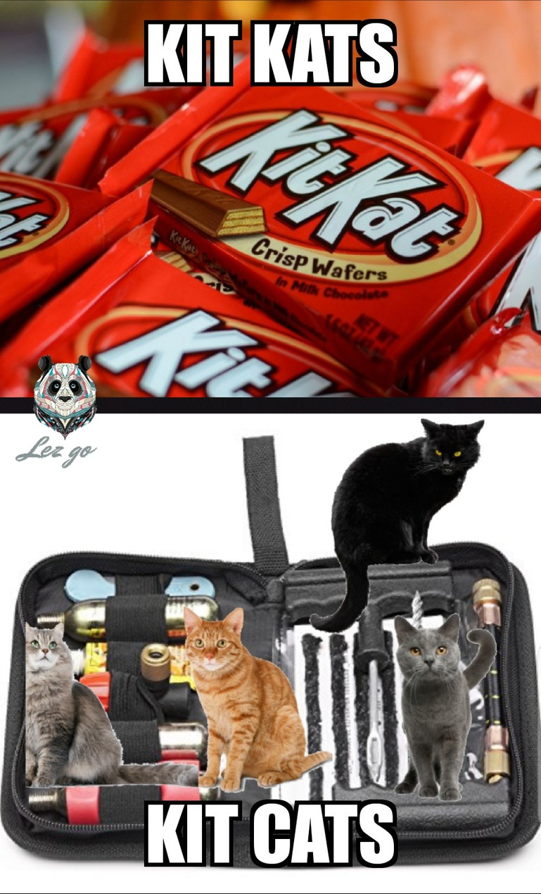 Kit - meme