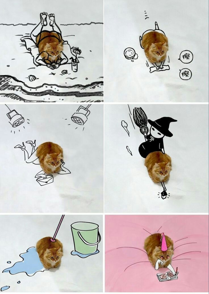 Gato crack - meme