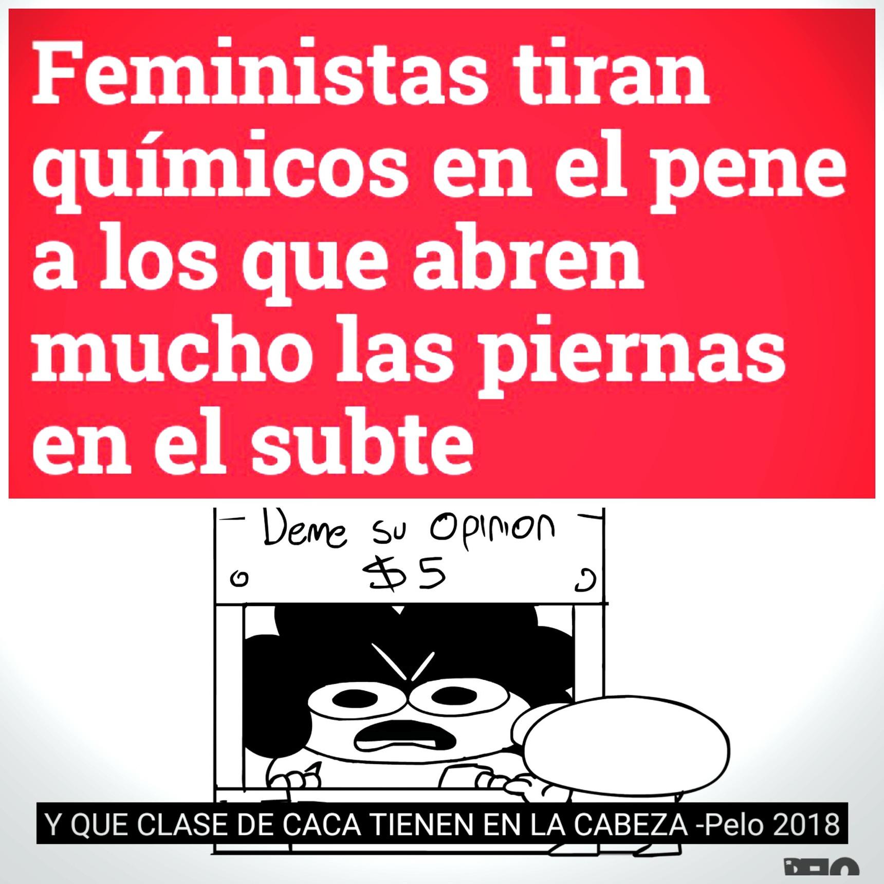 Stas feminazis - meme