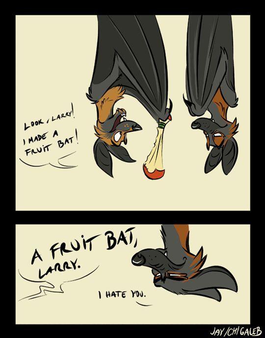 A FRUIT BAT LARREY - meme