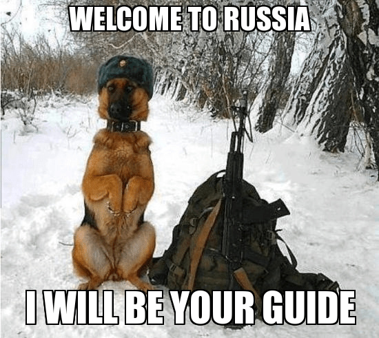 russian dogg - meme