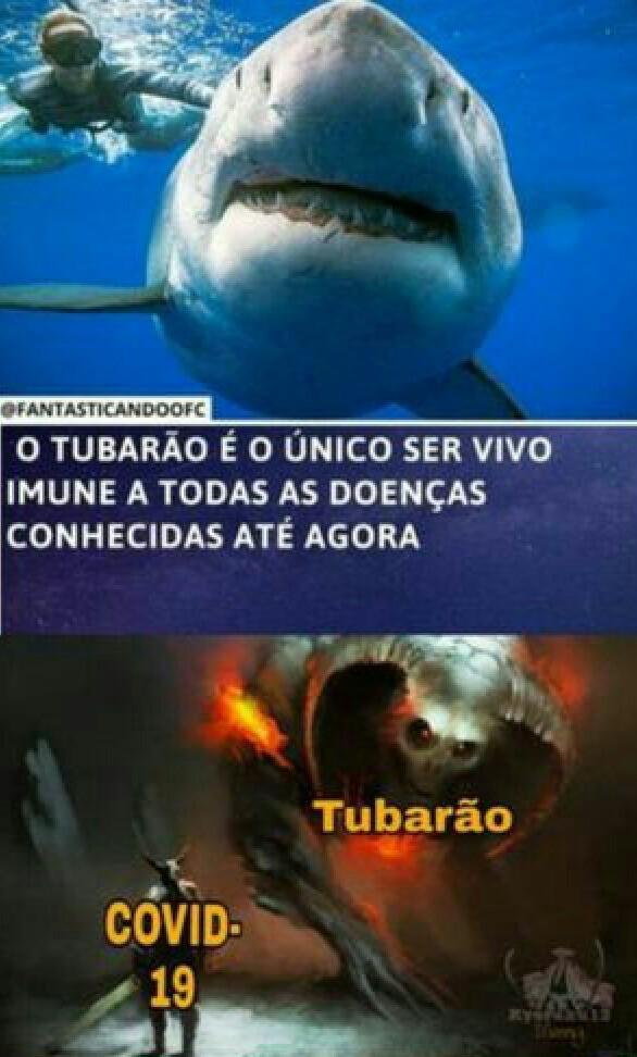 Sharknado - meme