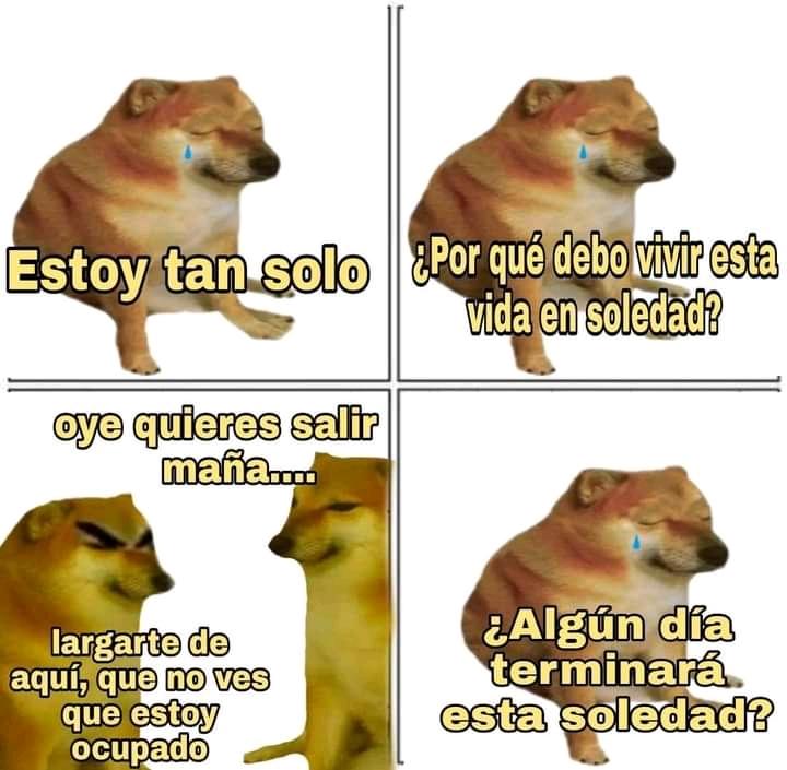 Cheems2 - meme