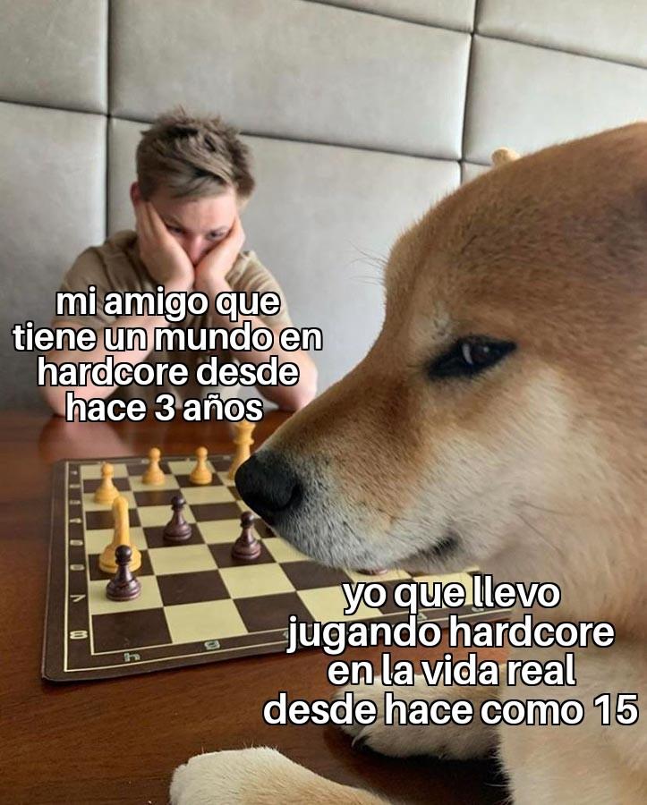 Meme mediardo