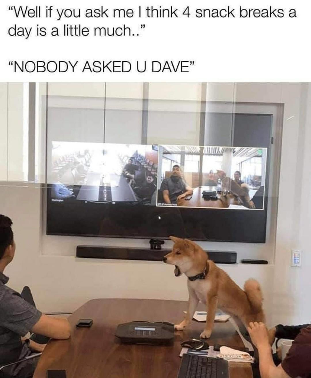 Love those board meetings - meme