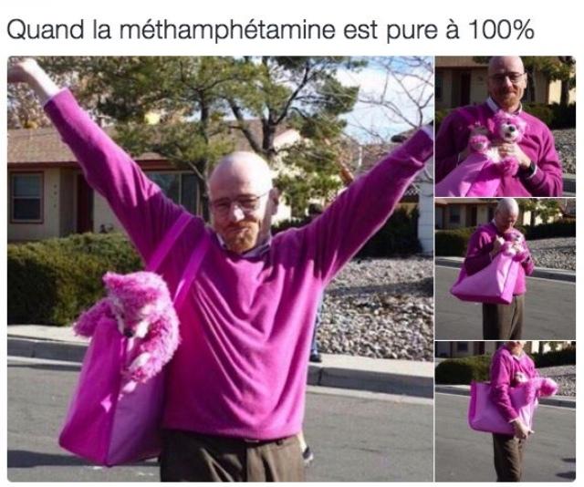 Rose! - meme