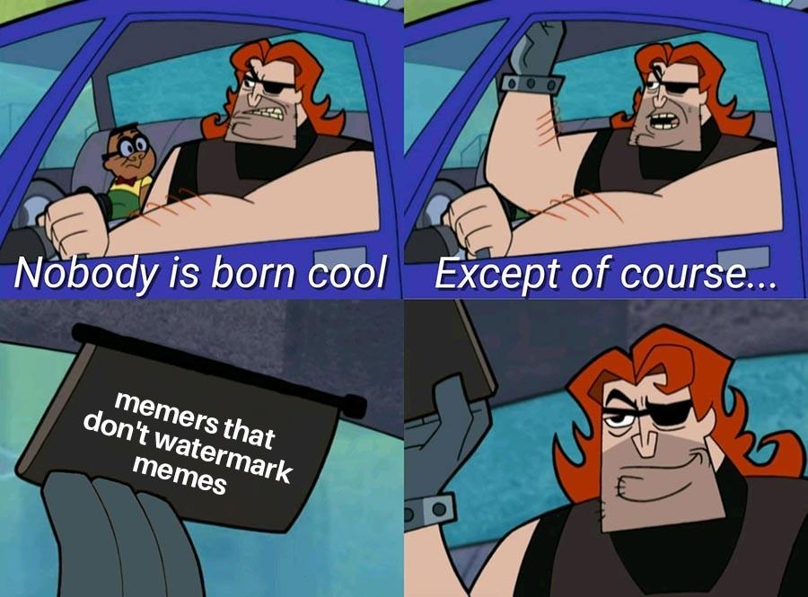 Skunt sucks by watermarking stolen memes