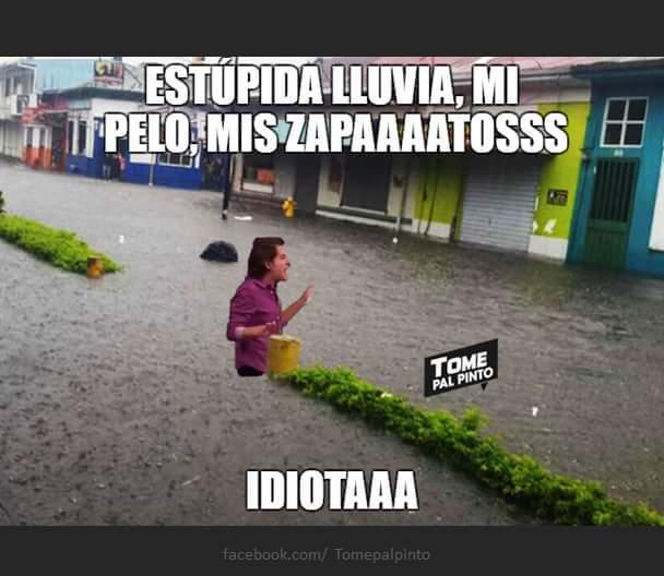 Doctora Polo pare la lluvia xDxDxD - meme