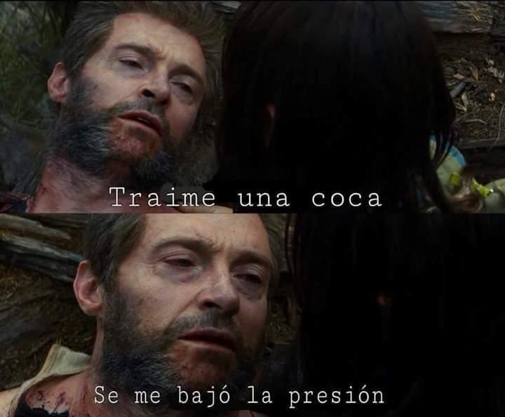 Koka - meme