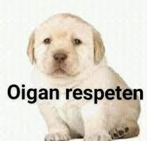 Oigan respeten - meme