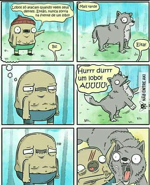 Cãozinho lindo - meme