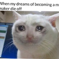When my dreams of becoming a meme maker die off mostly cuz I'm not funny