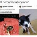 Democracia é o caralho!!