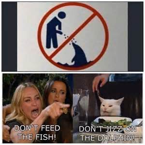 Don't piss on the fish. - meme