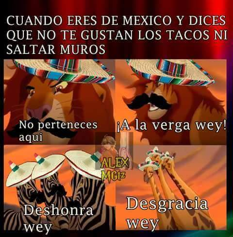 Mi México siempre <[:{v - meme