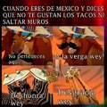 Mi México siempre <[:{v