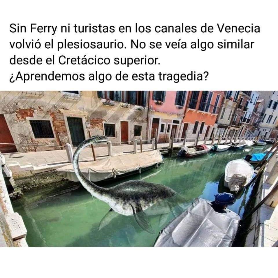 Venecian park - meme