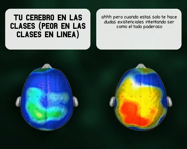 Cerebros :betterthan: - meme