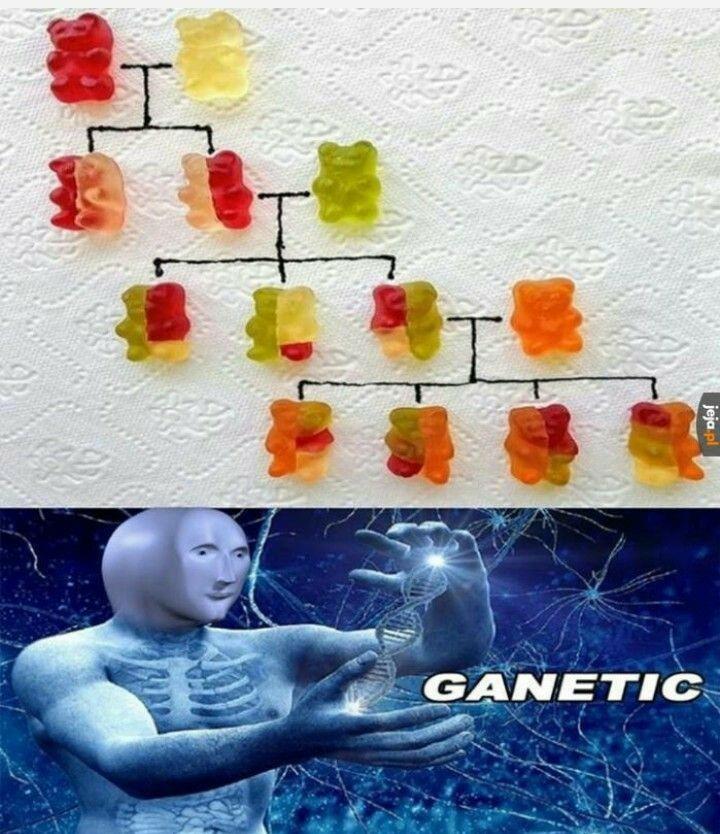Ganetic - meme