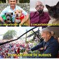 Lula o encantador de burros