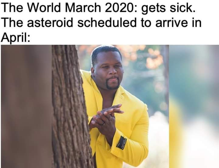 Asteroid, then volcanoes, and then a solar flare.....2020 lit af IMO!!! - meme