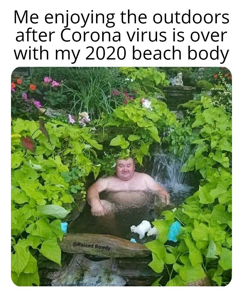 Corona Virus Body - meme
