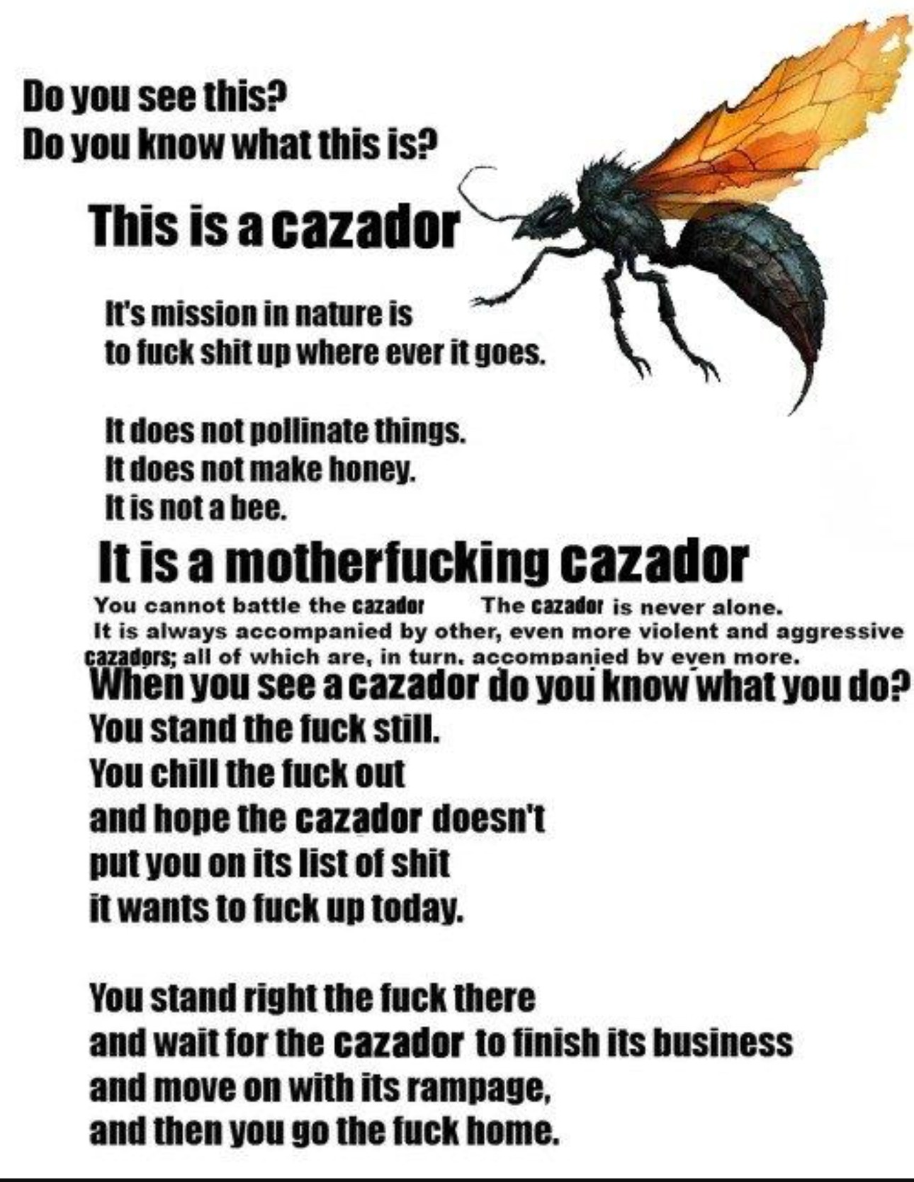 How to cazador - meme