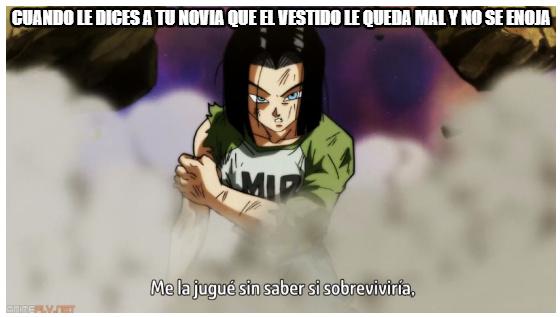 Numero 17 - meme