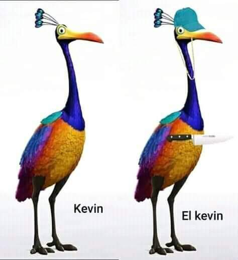 Kevin - meme