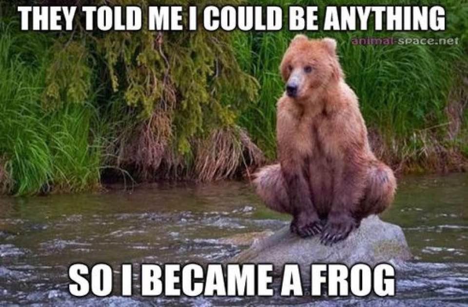 frog mania - meme