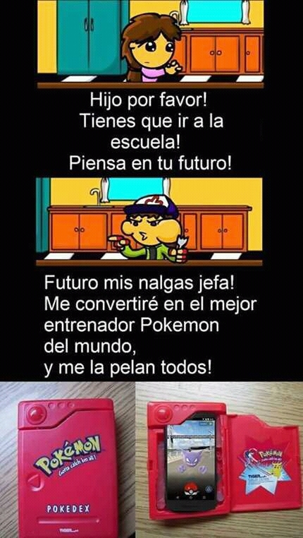 Puchamon Go! - meme