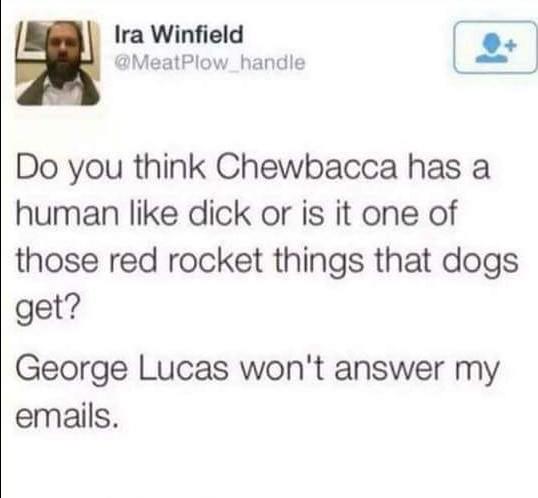 Chewbacca's penis - meme