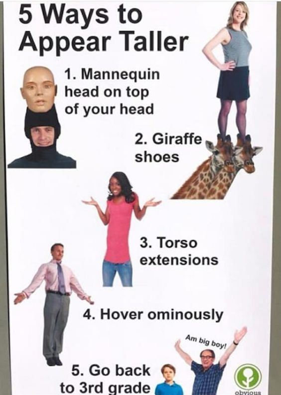 I personally like the giraffe shoes - meme