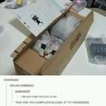 A box of cat