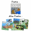 Tintin : ce baiseur de daronne