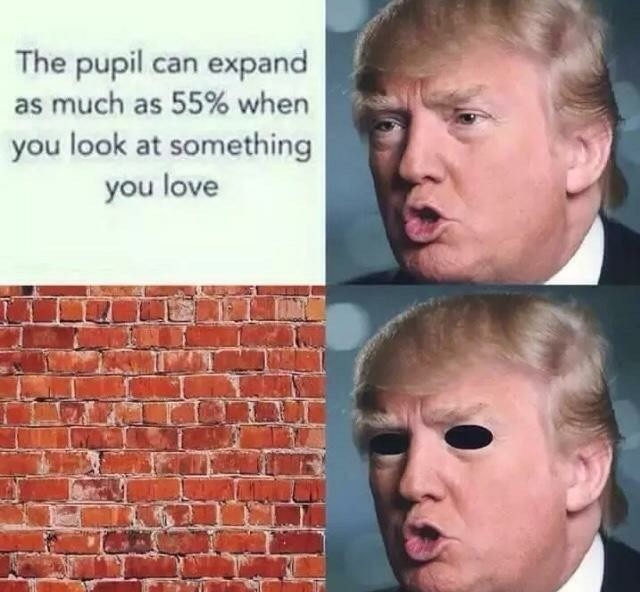 Daddy Trump - meme