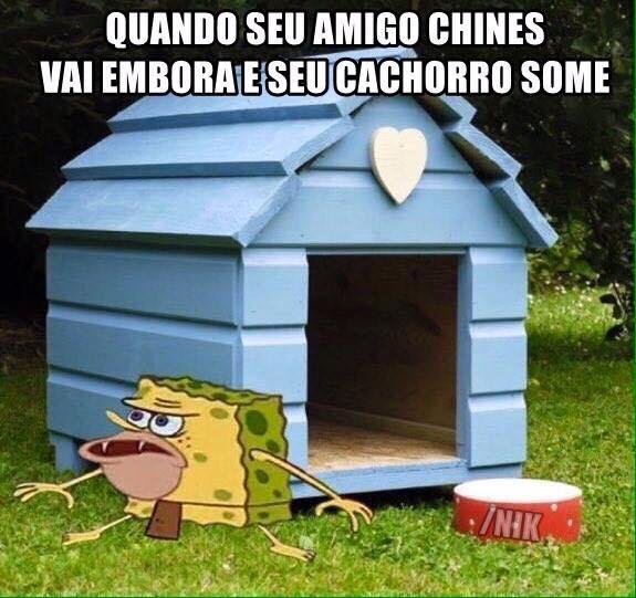calaio - meme