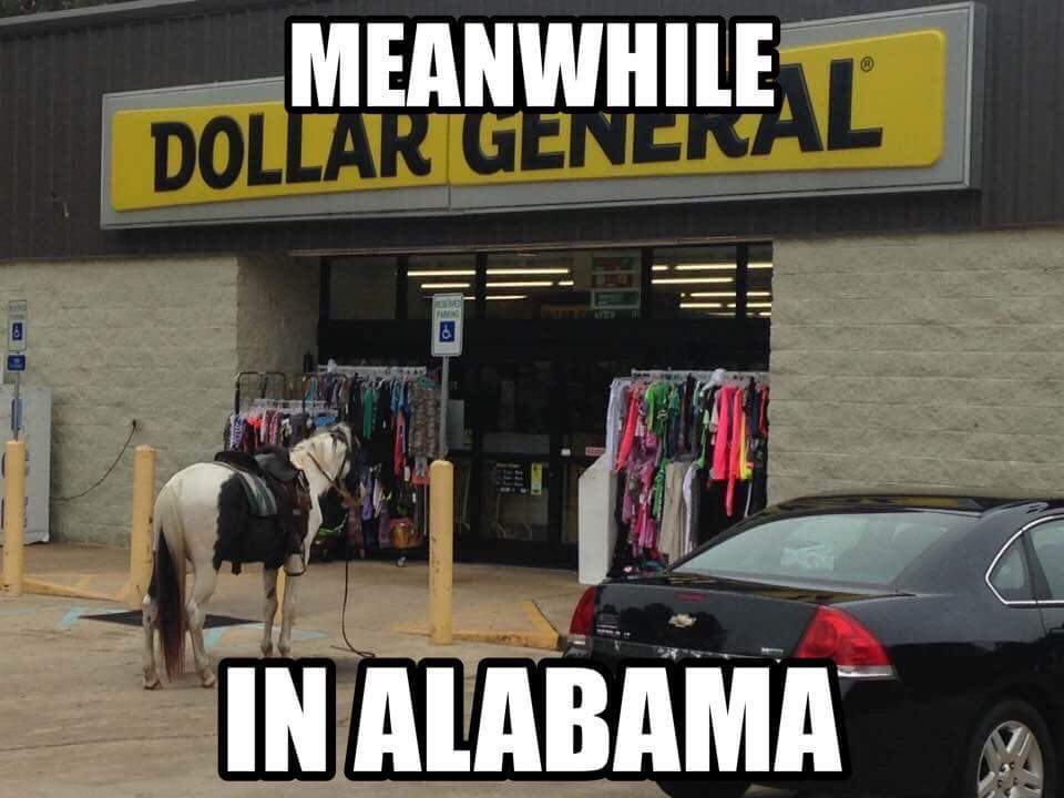 My little backwoods town in Alabama... this and a gas station are literally the only stores and no traffic lights in the town limits... - meme
