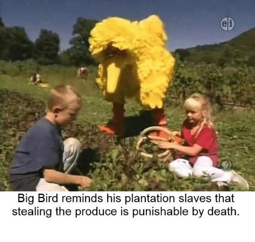 Get back to work slaves! - meme